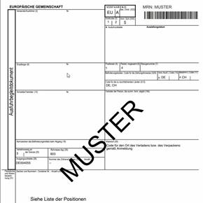 Ausfuhranmeldung-LogistikPoint NB- Zollabwicklung-Zollangetur